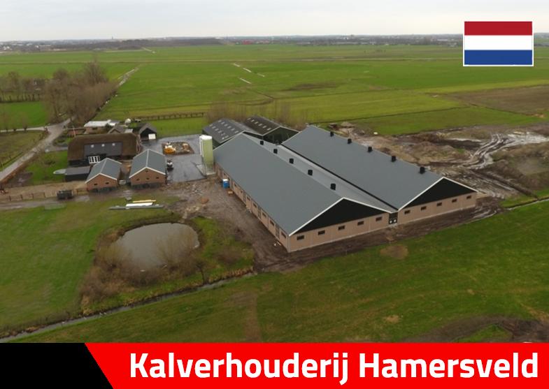 Kalverhouderij Hamersveld kalverstal nijkerk