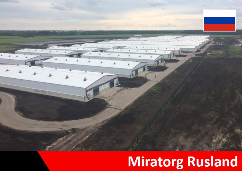 Calfs modern calf barn stable Russia Miratorg